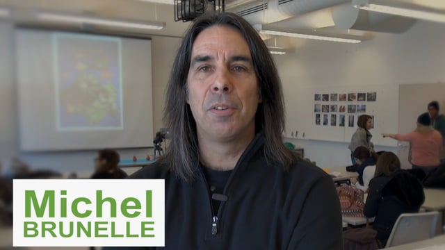 Des précaires chargés de passion : Michel Brunelle